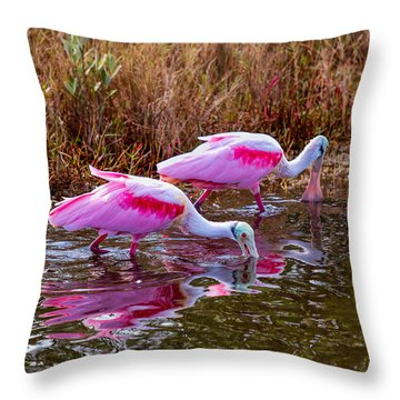 Roseate Spoonbills Swishing For Food Throw Pillow