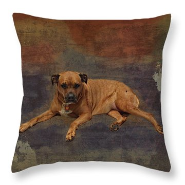 Throw Pillow featuring the photograph Rosebud In Space by Lewis Mann