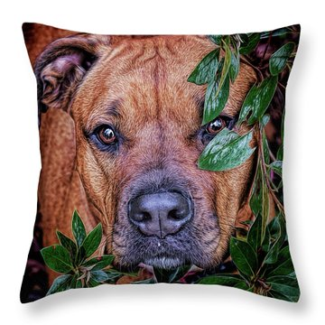 Throw Pillow featuring the photograph Rosebud by Lewis Mann