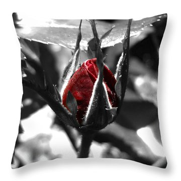 Rosebud Red Throw Pillow
