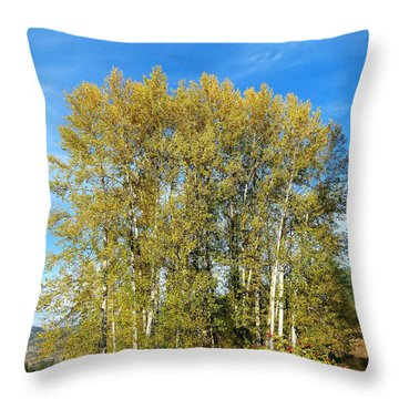 Rosehips And Cottonwoods Throw Pillow