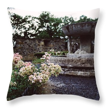 Flowers And A Fountain Throw Pillow