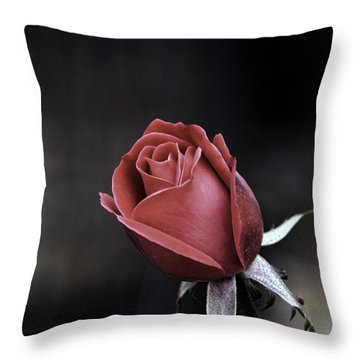 Throw Pillow featuring the photograph Roses Are Red by William Havle