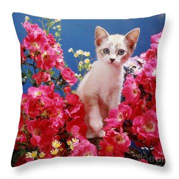 Roses Galore Throw Pillow