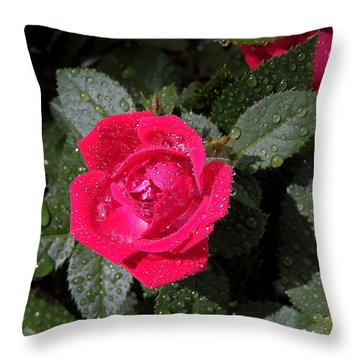 Throw Pillow featuring the photograph Roses In The Rain by Allen Beilschmidt