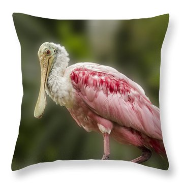 Rosette Spoonbill Throw Pillow