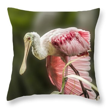 Throw Pillow featuring the photograph Rosette Spoonbill Wings by Paula Porterfield-Izzo