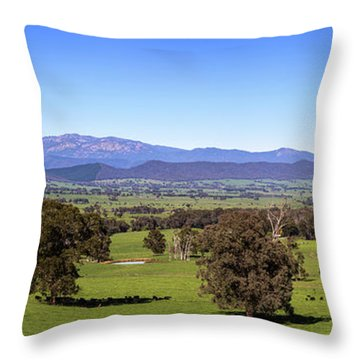 Rosewhite Spring Throw Pillow