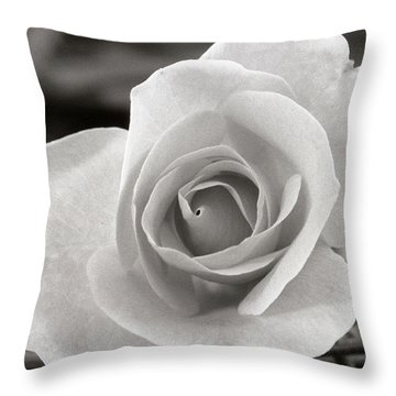 Rosewood009 Throw Pillow by Michael Peychich