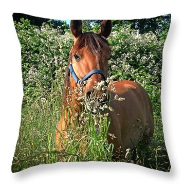 Rosey's Heaven Throw Pillow