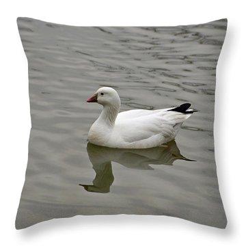 Ross's Goose Throw Pillow