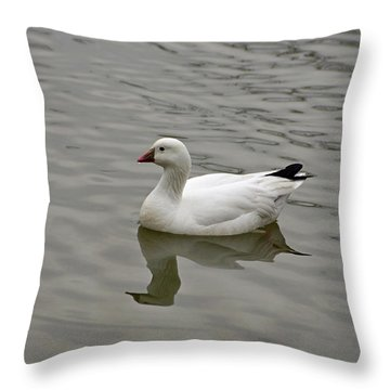Ross's Goose Throw Pillow
