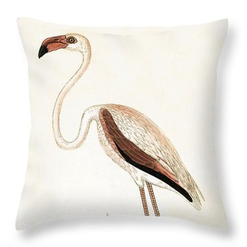 Rosy Flamingo Throw Pillow