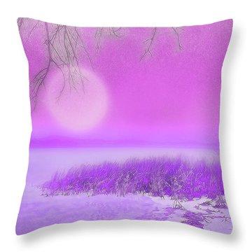 Rosy Hued Moonlit Lake - Boulder County Colorado Throw Pillow