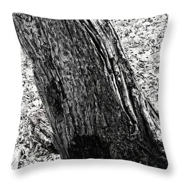 Rotten To The Core Throw Pillow