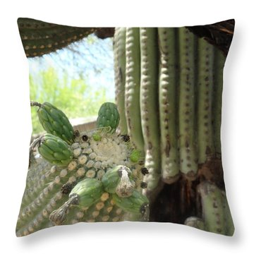 This Cactus Is Rotten To The Core Throw Pillow