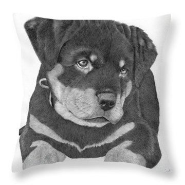 Rottweiler Puppy Throw Pillow by Patricia Hiltz