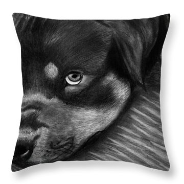 Rotty Throw Pillow by Peter Piatt