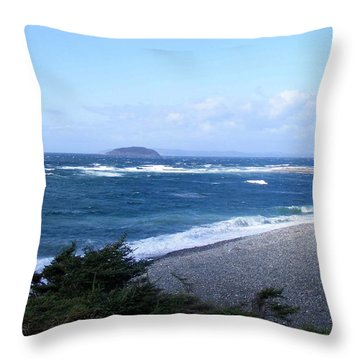Throw Pillow featuring the photograph Rough Day On The Point by Barbara Griffin