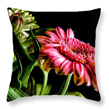 Throw Pillow featuring the photograph Rough Red Daisy With Greenery by Dennis Dame