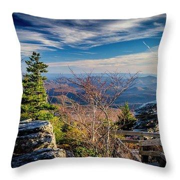 Rough Ridge View Throw Pillow