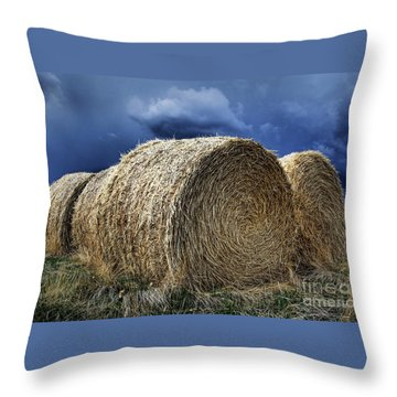 Throw Pillow featuring the photograph Round Bales by Brad Allen Fine Art
