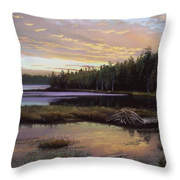 Round Pond Throw Pillow by Art Chartow