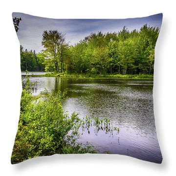 Throw Pillow featuring the photograph Round The Bend In Oil 36 by Mark Myhaver