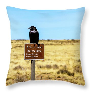 Rout 66 Watch Throw Pillow
