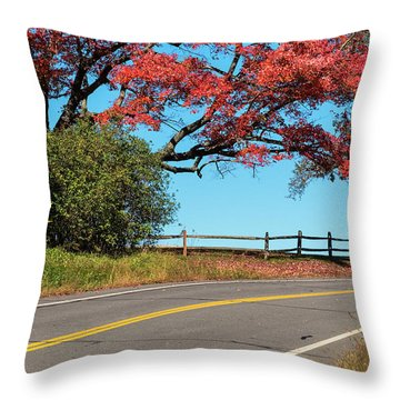 Throw Pillow featuring the photograph Route 5 Color by Tom Singleton