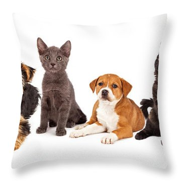 Row Of Puppies And Kittens Throw Pillow by Susan Schmitz