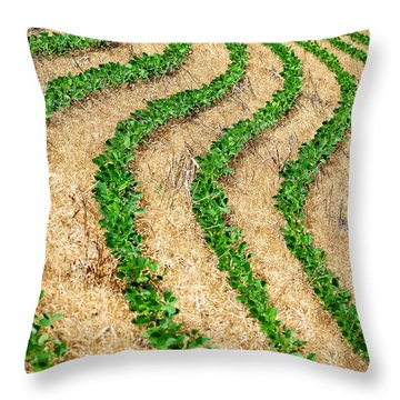 Rows Of Green Throw Pillow