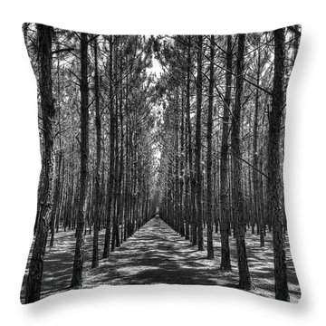 Rows Of Pines Vertical Throw Pillow