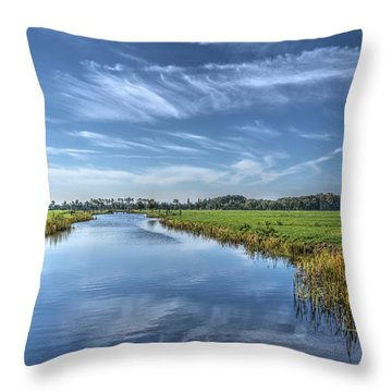 Royal Canal And Grasslands Throw Pillow