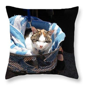 Royal Carriage Throw Pillow