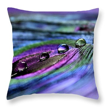 Soul Reflections Throw Pillow