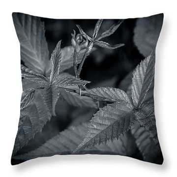 Royal Five Throw Pillow