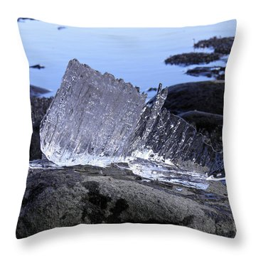 Throw Pillow featuring the photograph Royal Ice Creature by Sami Tiainen
