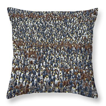 Throw Pillow featuring the photograph Royal Layers by Tony Beck
