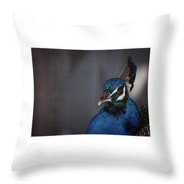 Royal Plume Throw Pillow