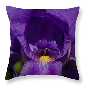 Gold With Royal Purple Robes Throw Pillow
