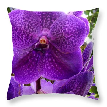 Royal Purple Orchids Throw Pillow