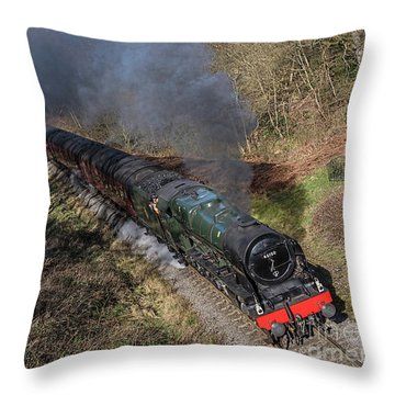 Royal Scott Different Angle Throw Pillow