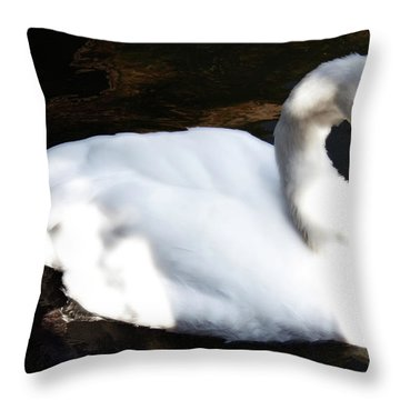 Royal Swan Throw Pillow