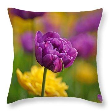 Royal Tulips Throw Pillow