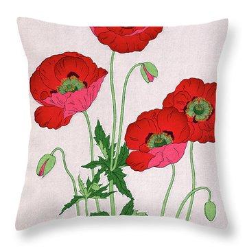Roys Collection 7 Throw Pillow