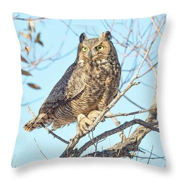 Owlish Throw Pillow