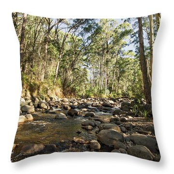 Throw Pillow featuring the photograph Rubicon River by Linda Lees