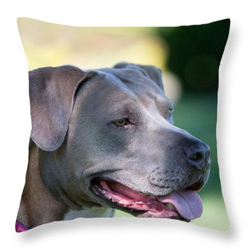 Ruby 24 Throw Pillow