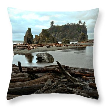 Ruby Beach Driftwood Throw Pillow